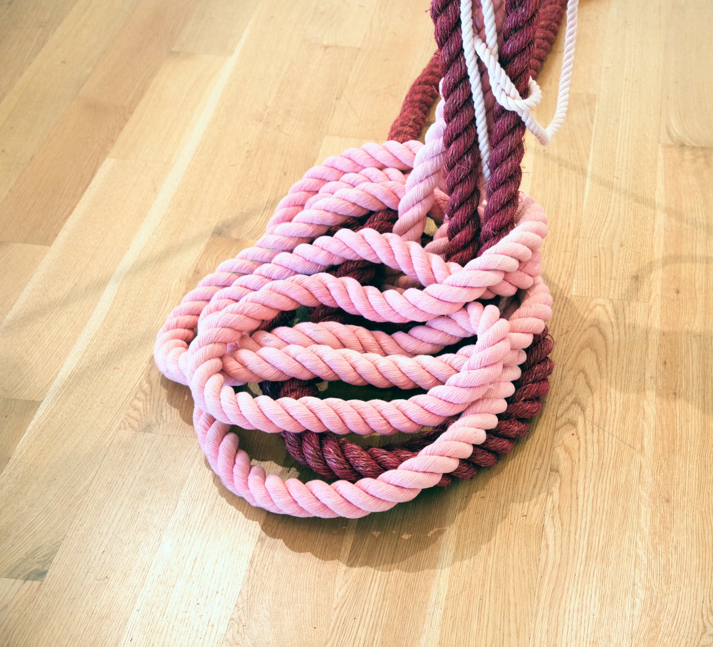 RopesPinksZarrow8.jpg
