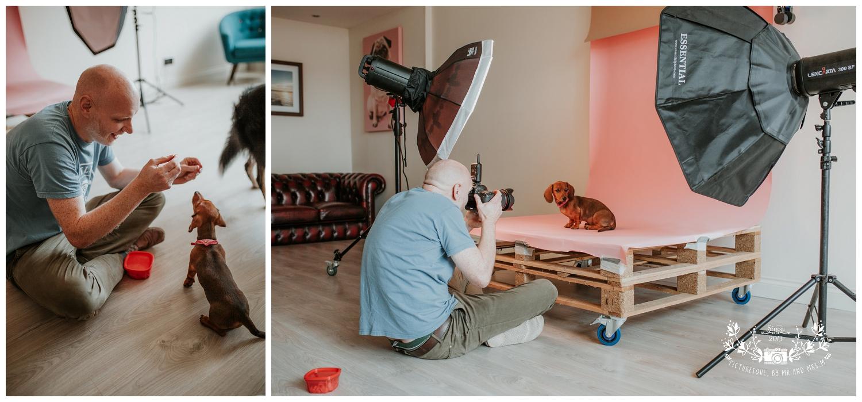 Pet Photography, Scotland, Mutley's Snaps_0001.jpg