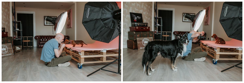 Pet Photography, Scotland, Mutley's Snaps_0003.jpg
