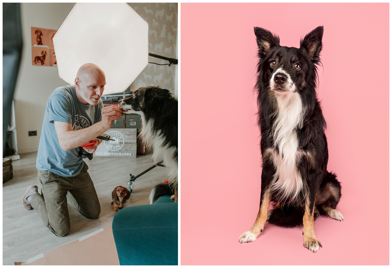 Pet Photography, Scotland, Mutley's Snaps_0004.jpg