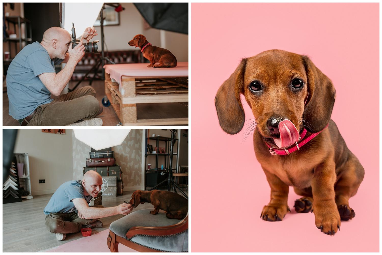 Pet Photography, Scotland, Mutley's Snaps_0005.jpg