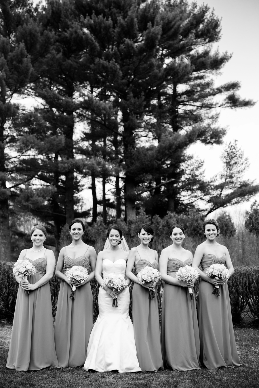 bridal party formal photograph