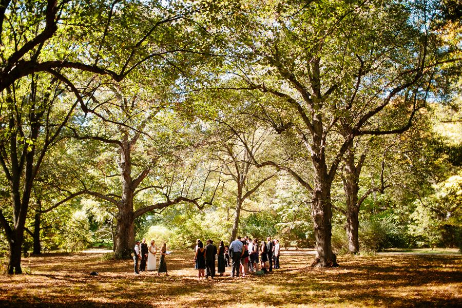 outdoors wedding ceremony photography arnold arboretum boston massachusetts