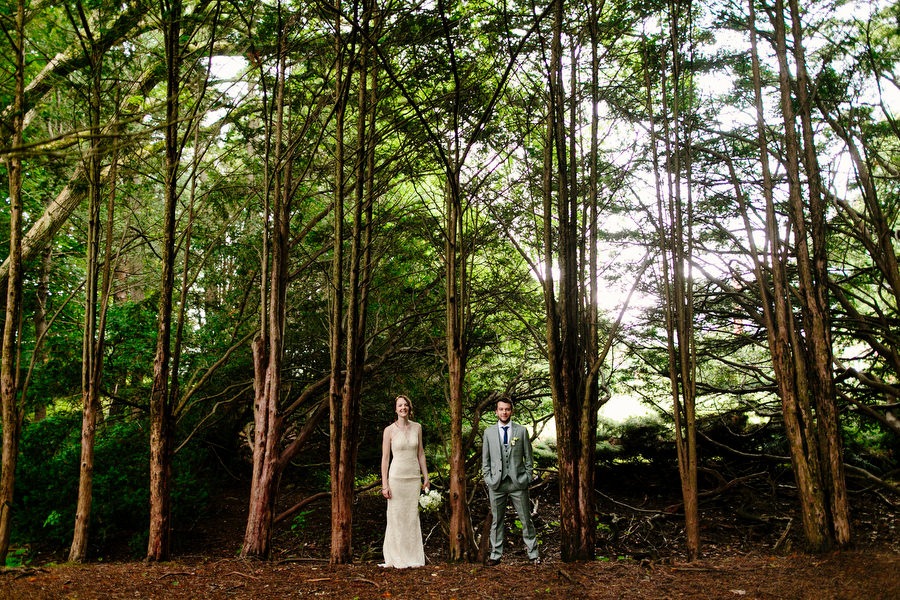 bride and groom in forest