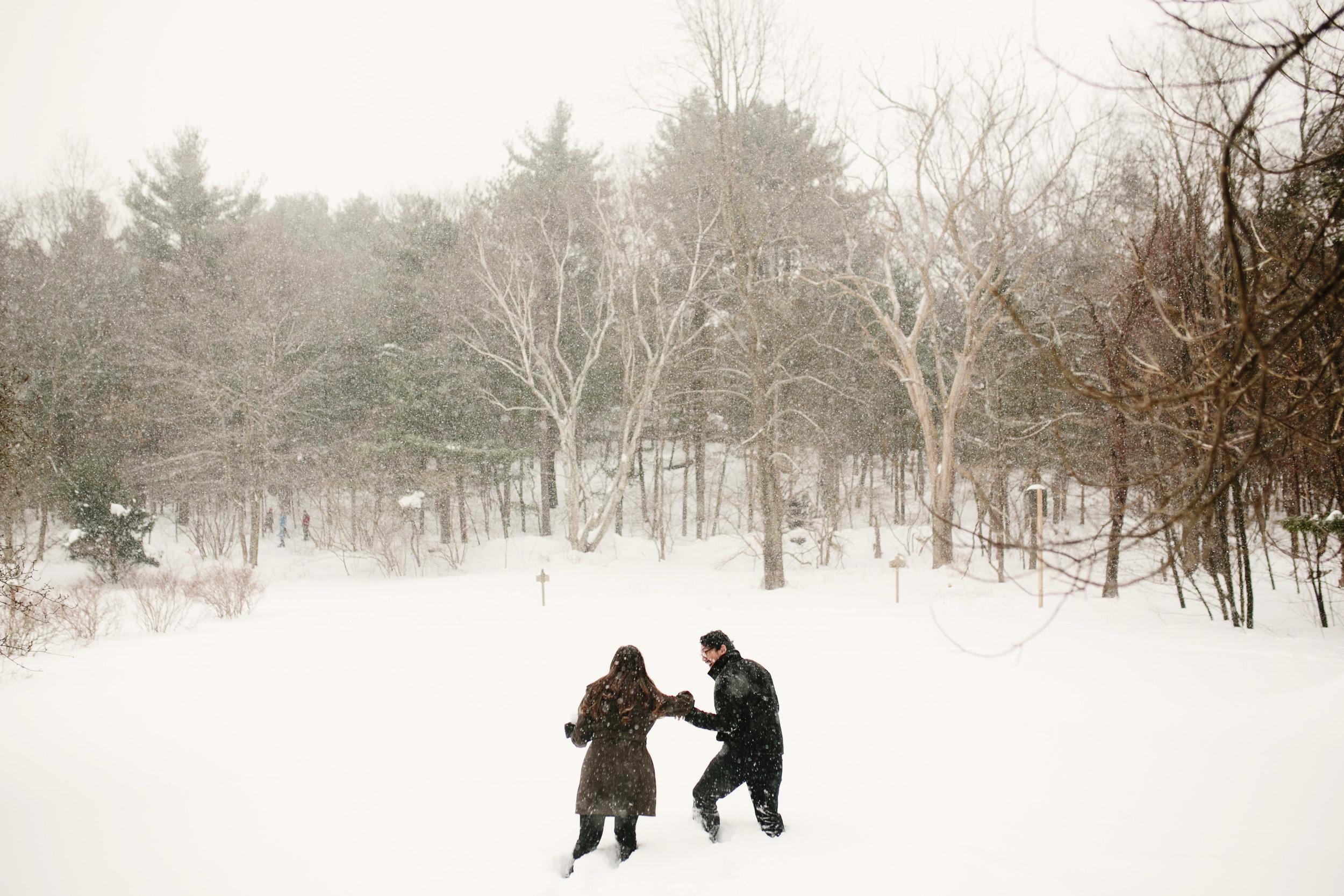 snowy engagement shoot in winter at mass audubon's habitat wildlife sanctuary in belmont