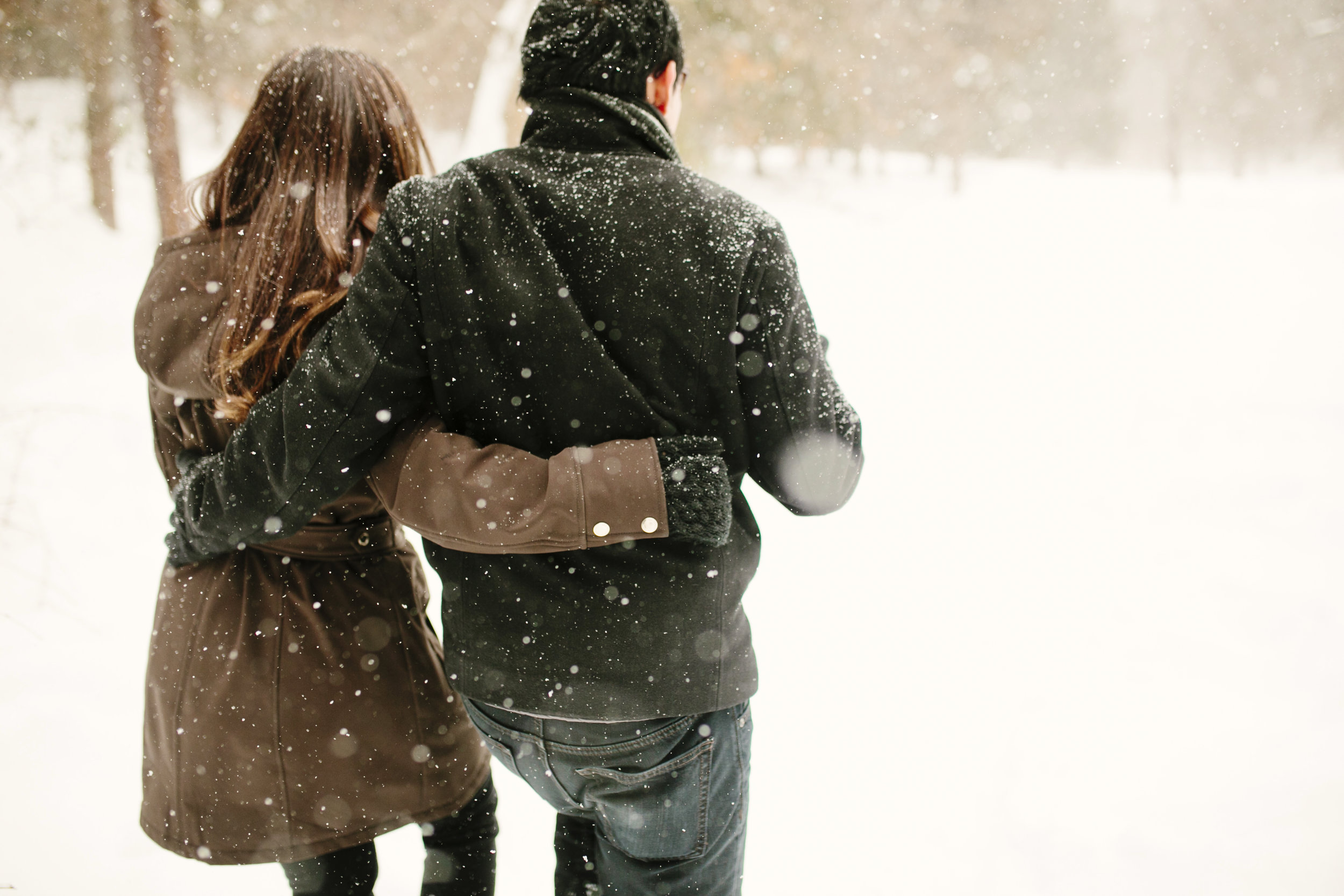 couple walking in snow during winter engagement session in belmont's mass audobon habitat wildlife sanctuary