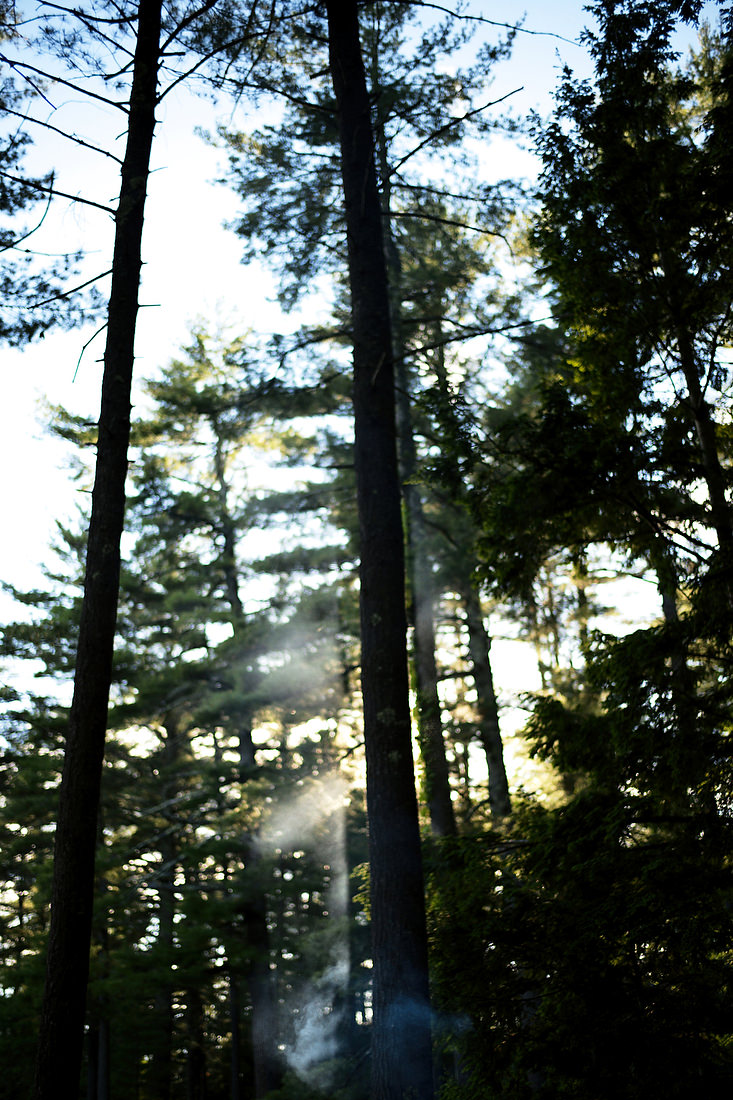 Migis_Lodge_Wedding_in_Maine-17.JPG