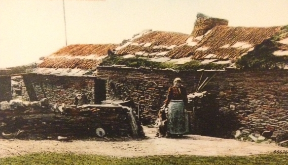 A typical Croft, farmhouse, found on the Orkney Islands.  Harcus ancestors would have lived in this type of dwelling.