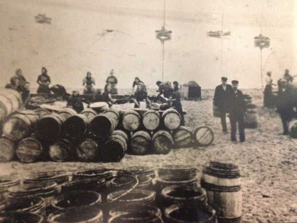 Women were also employed in the fishing industry in the Orkney islands to gut the fish and pack them with salt in barrels.