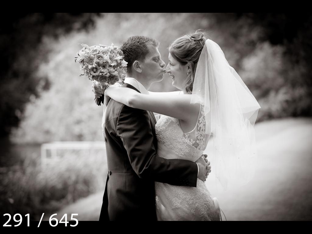 Emma & Stuart-291.jpg