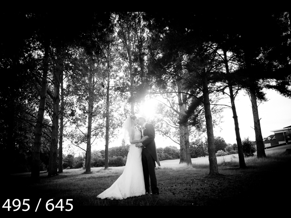 Emma & Stuart-495.jpg