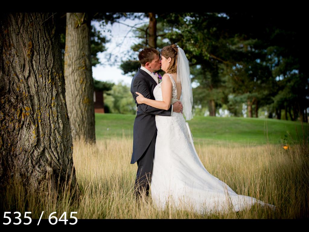 Emma & Stuart-535.jpg