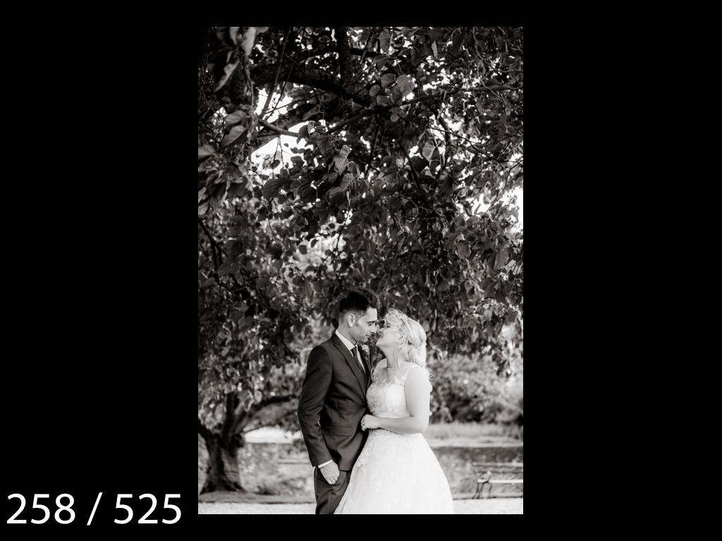 SUZY&JOSH-258.jpg
