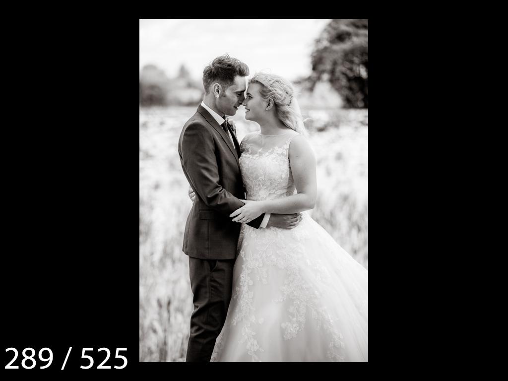 SUZY&JOSH-289.jpg