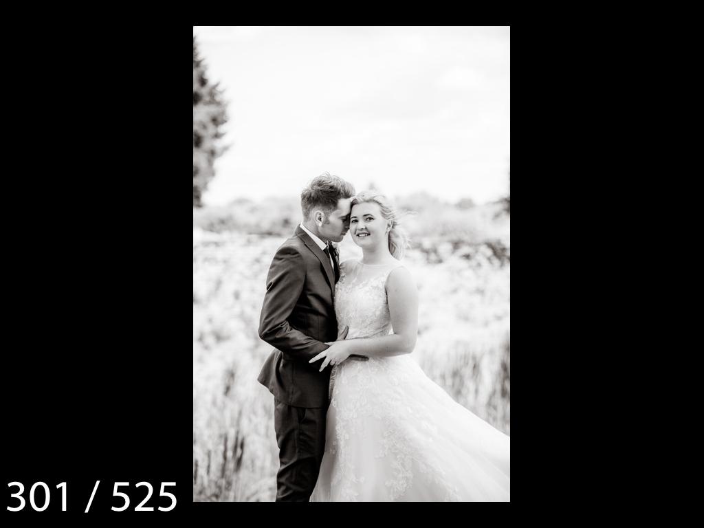 SUZY&JOSH-301.jpg