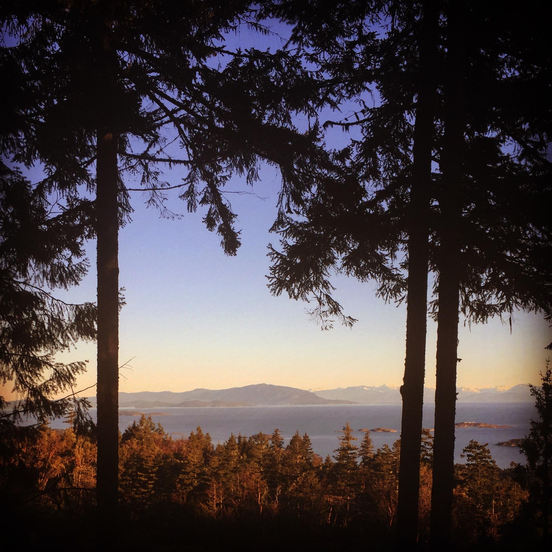 foothills sunset.jpg