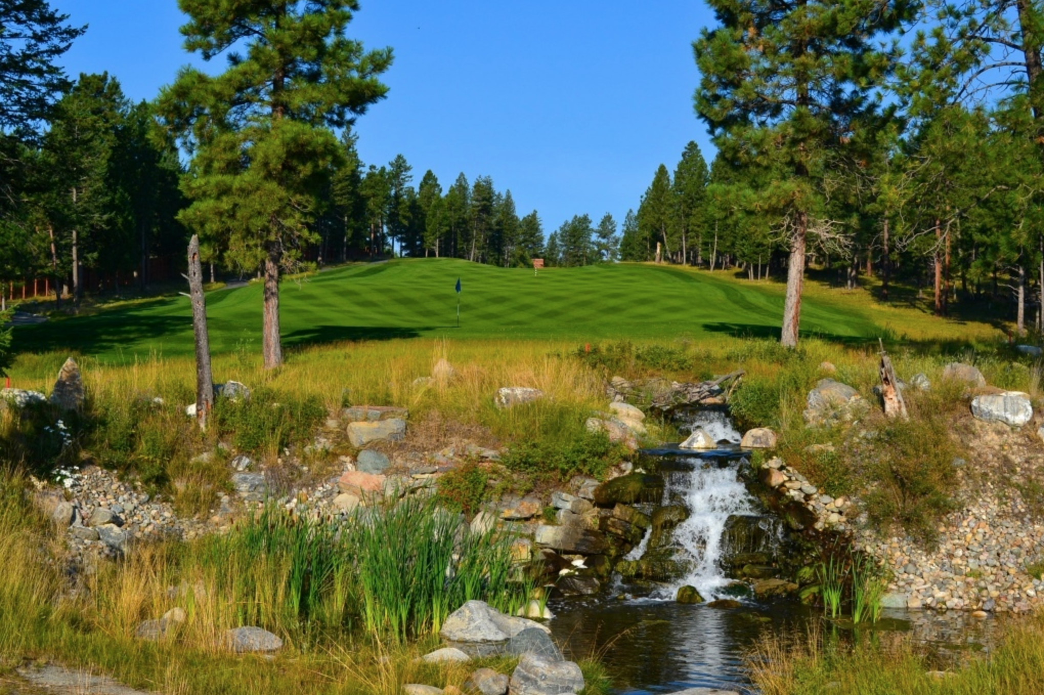 Wildstone Golf Course 2017-04-03 12.59.10.png