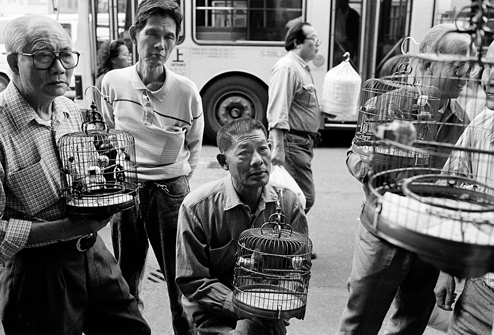 hk_birdmen_untitled_20130804.jpg