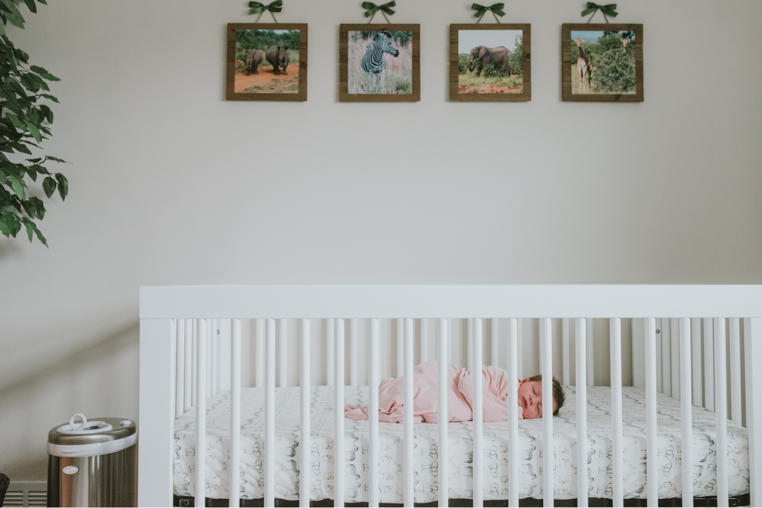 Safari-Themed-Nursery