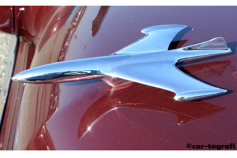 take-flight-hood-mascots-car-tografi-buly.jpg