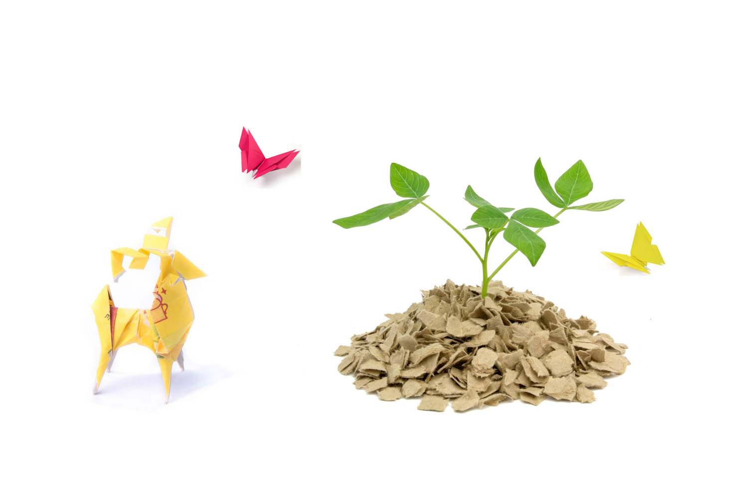Parting with Paper is our 4th installment of this 4 part series on creating eco-heros.