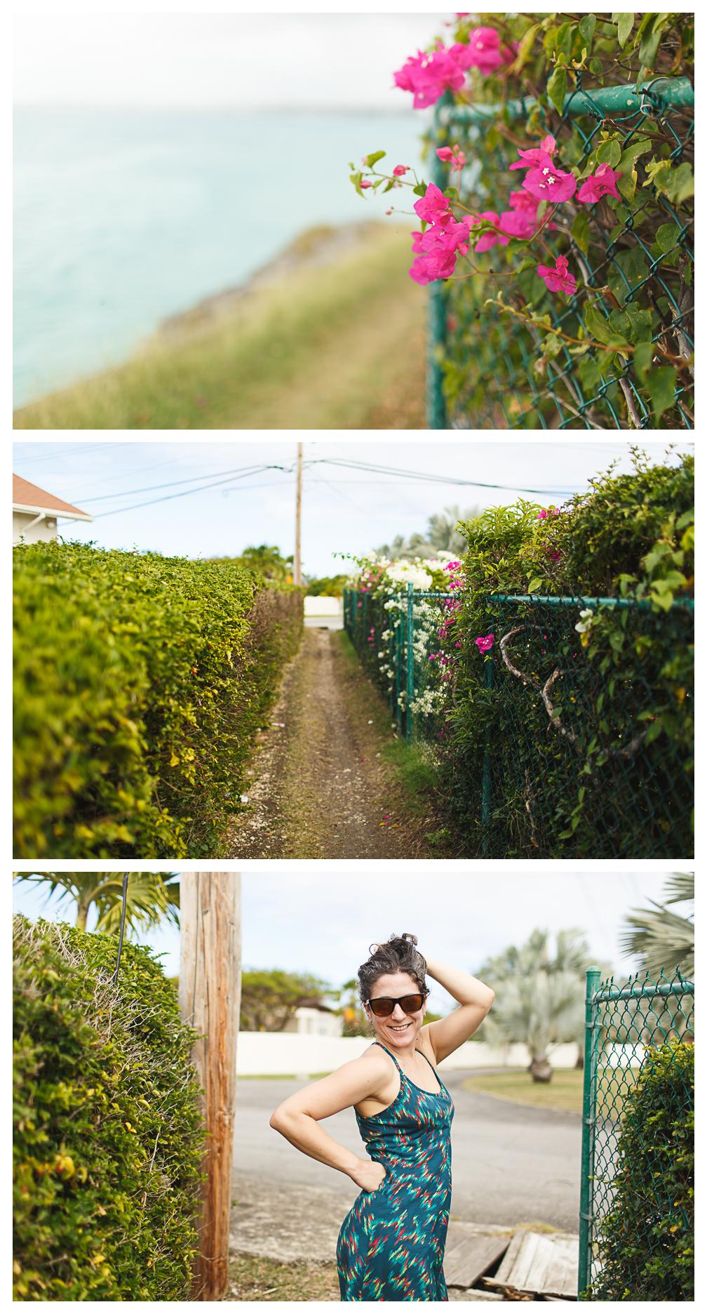 Barbados blog 1-8.jpg