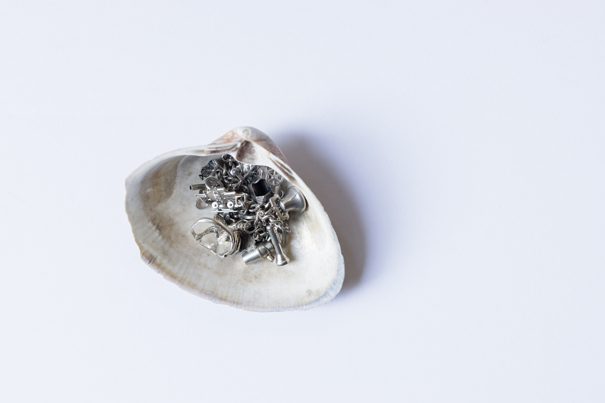 bracelet and ring in a quahog shell