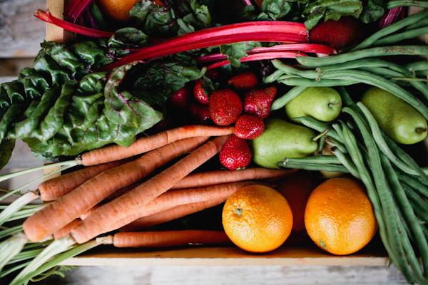 fresh harvest-236.jpg