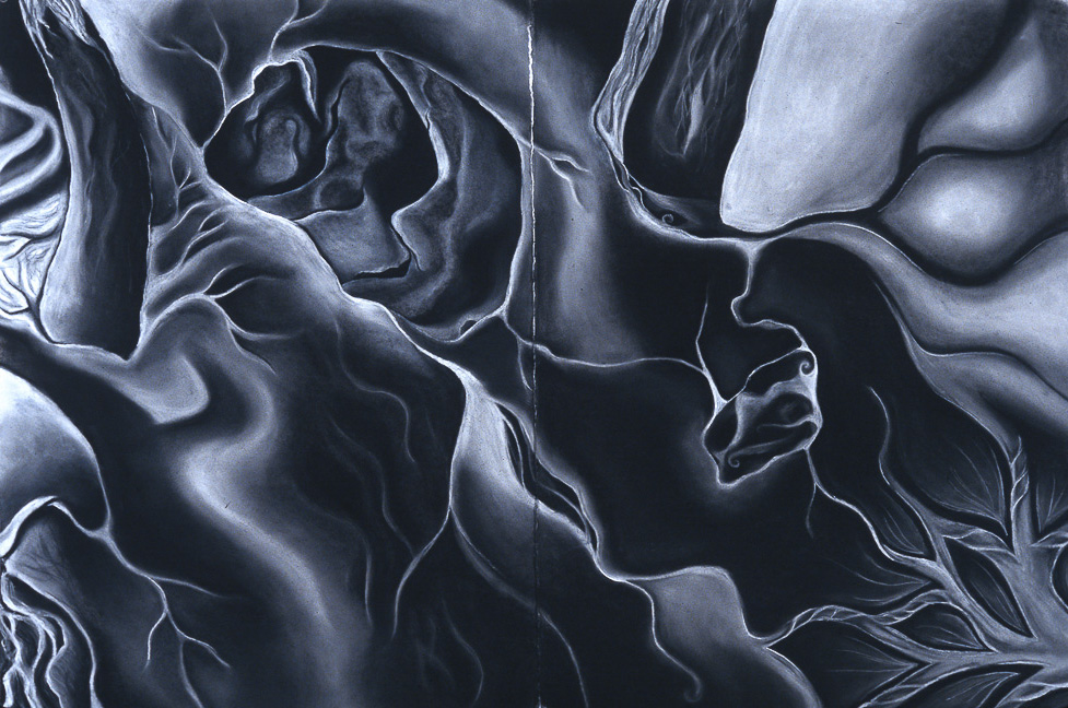 Close crop; charcoal drawing
