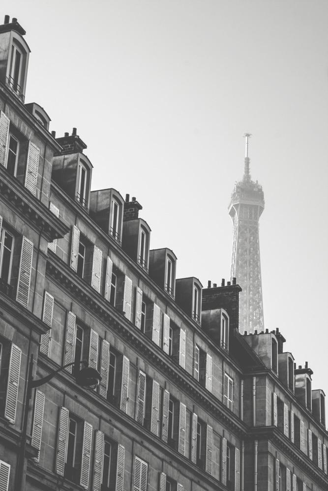 paris001.jpg
