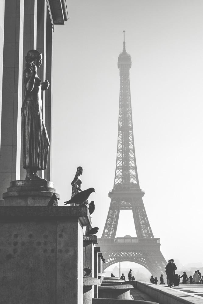 paris006.jpg
