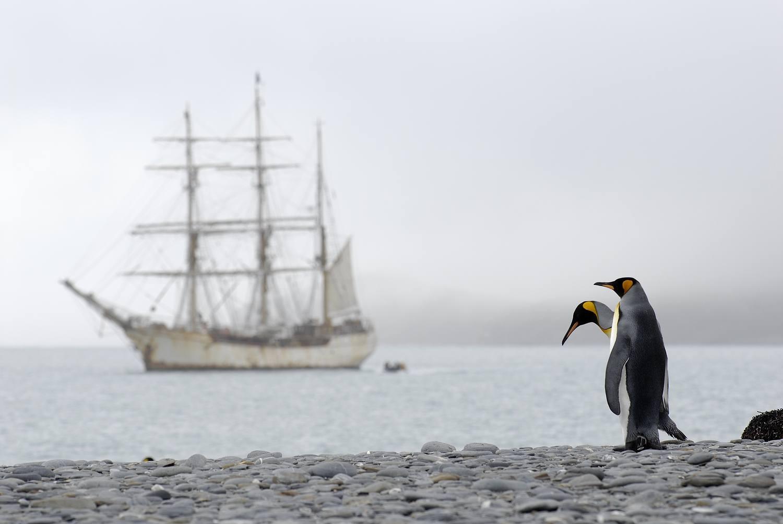Antarctica_2007_3129a_20_verkleind.jpg