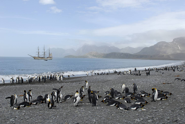 Antarctica_2007_3293a_21_verkleind.jpg