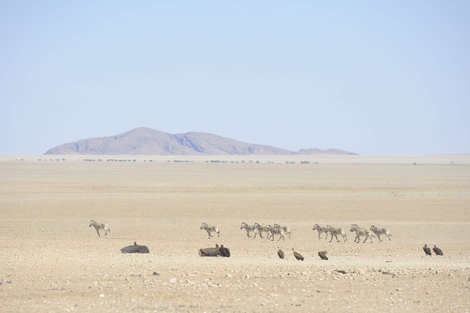 thijsheslenfeld_157_namibia.jpg