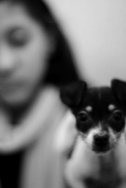 Dog+BW.jpg