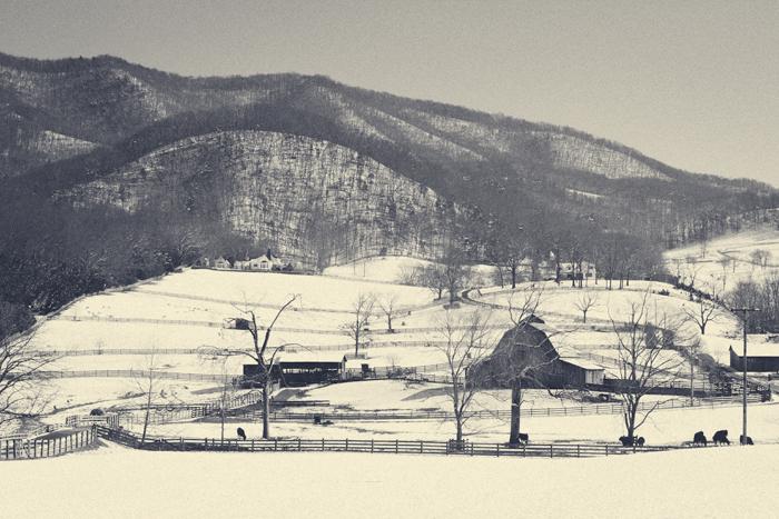 2013-February-Landscape-2.jpg