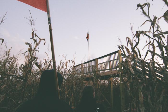 Corn Maze-21.jpg