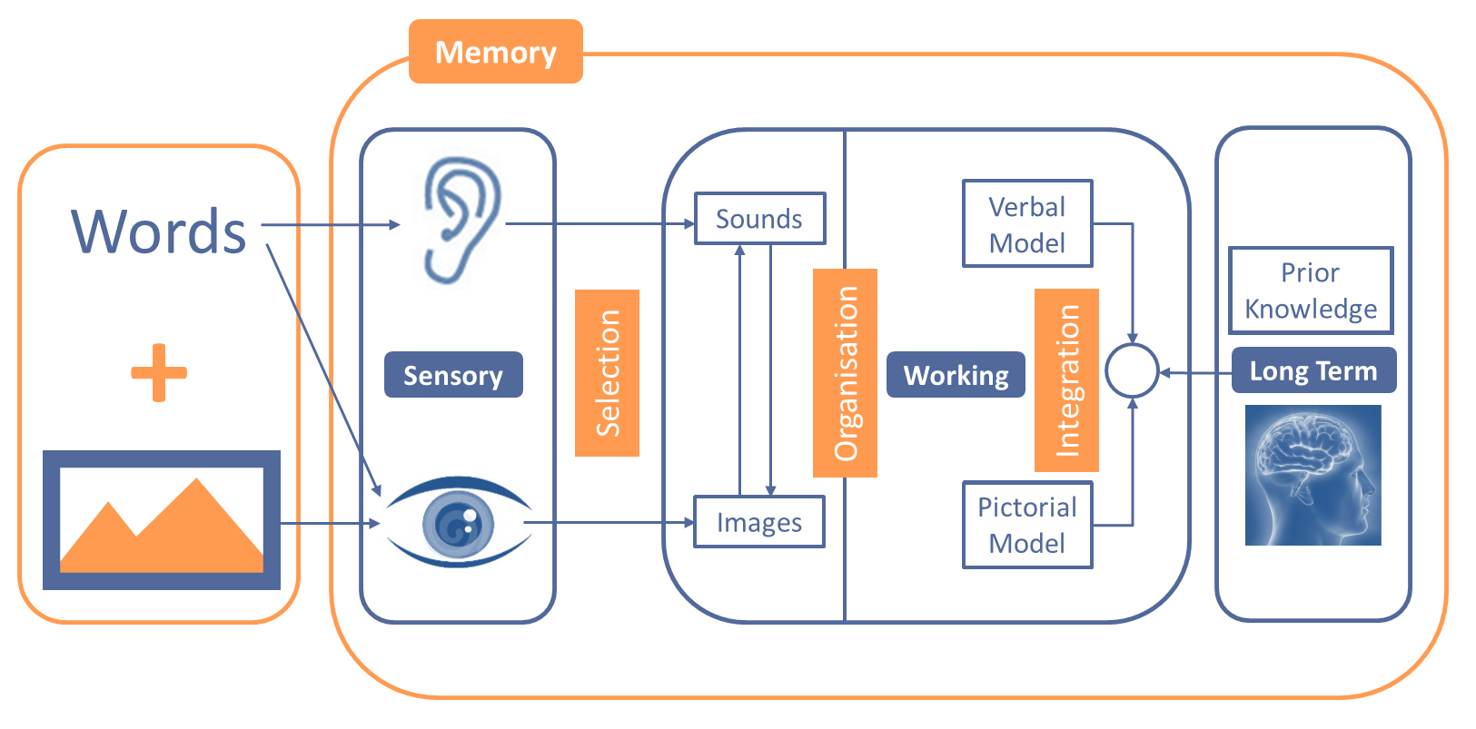 sales-presentations-how-the-memory-works.png