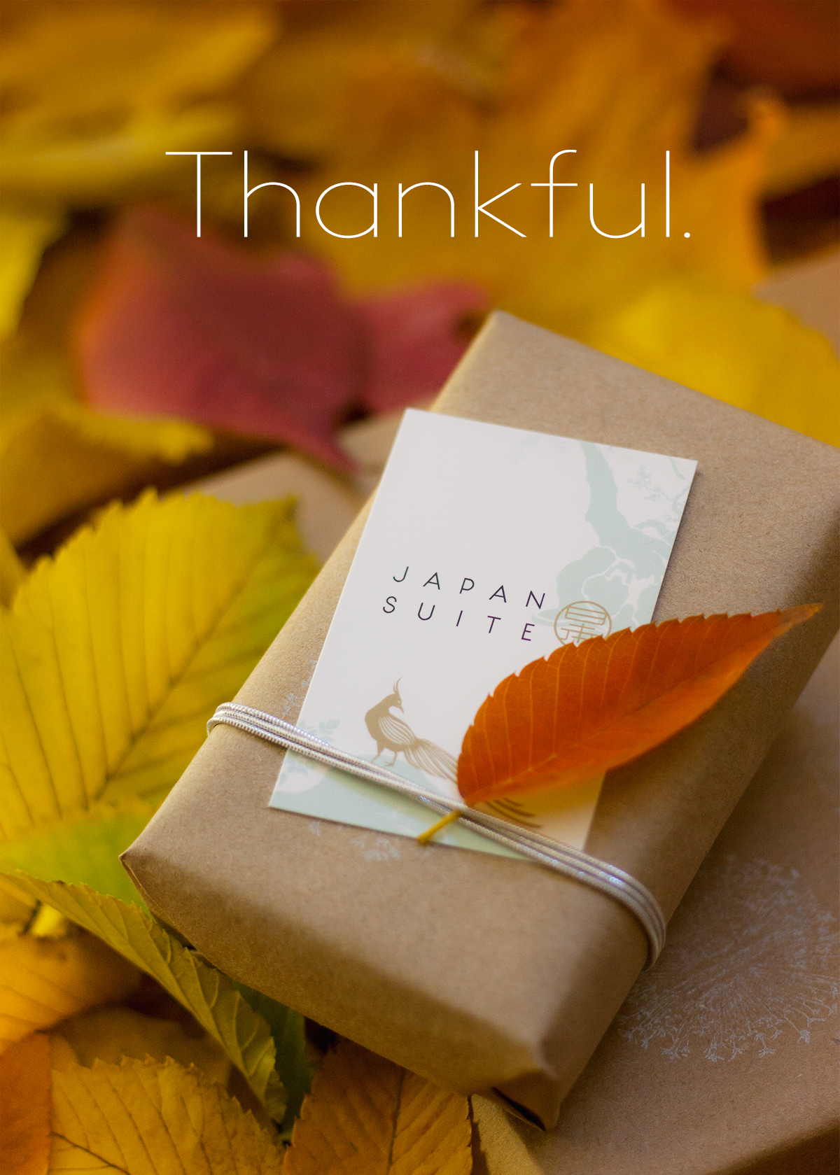 japan-suite-thanksgiving15