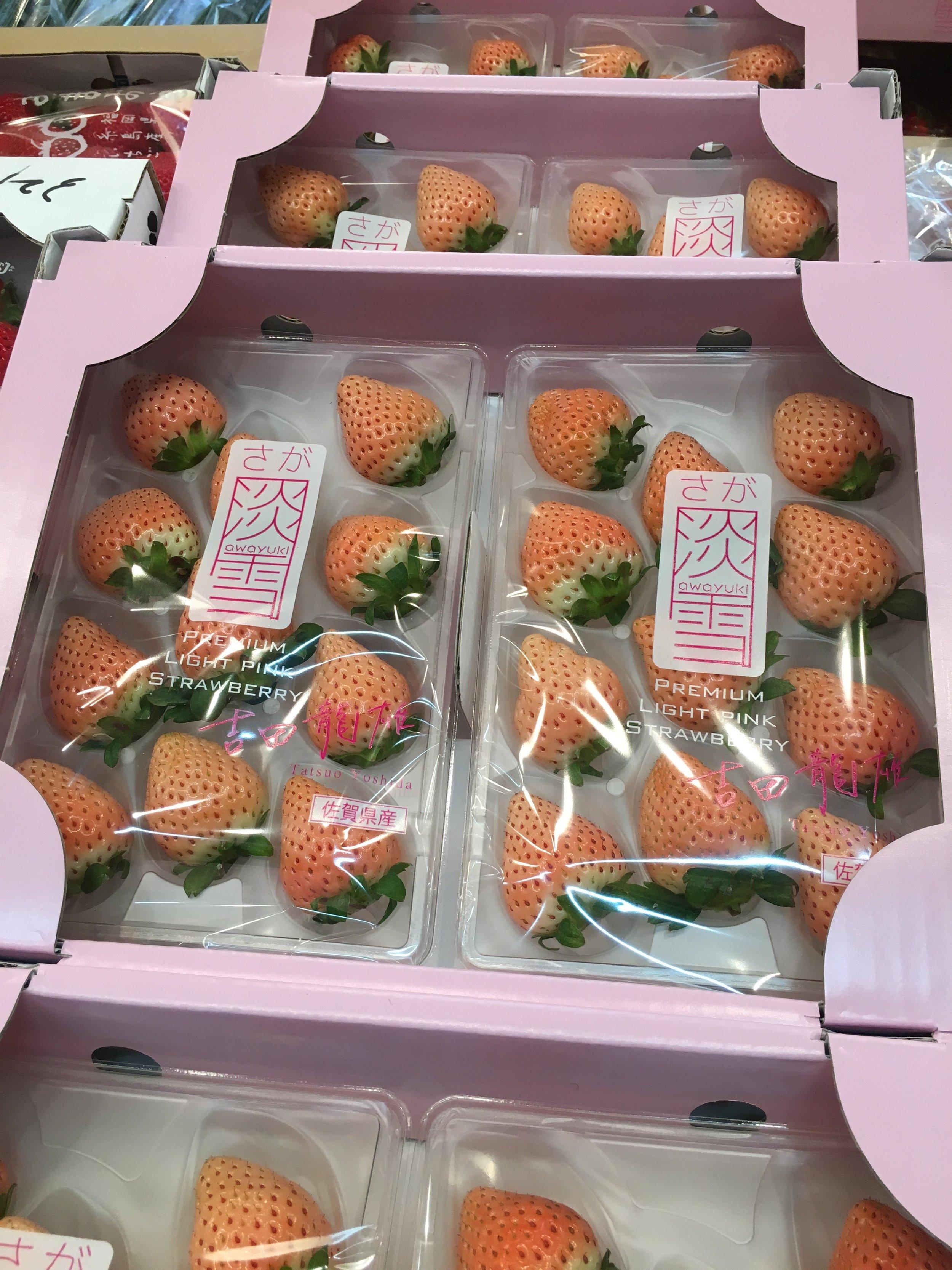Saga light snow strawberry