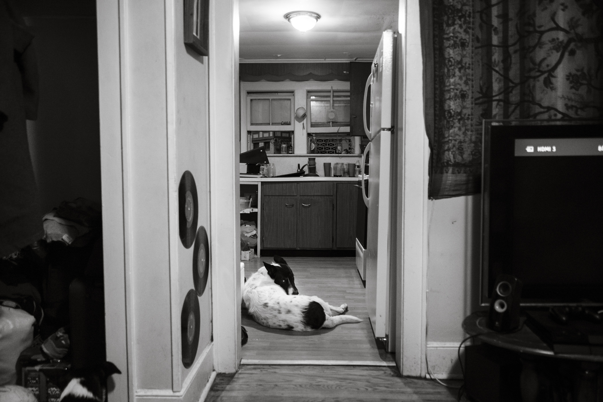 04202014-GangofThievesThunderfunk-JuliaLuckettPhotography-65.jpg