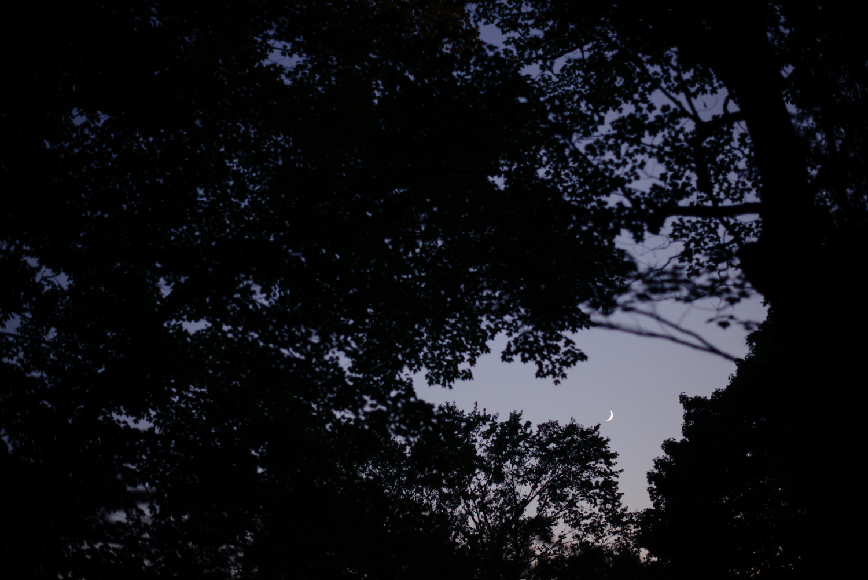 09232017-MollyAlex-JuliaLuckettPhotography-325.jpg