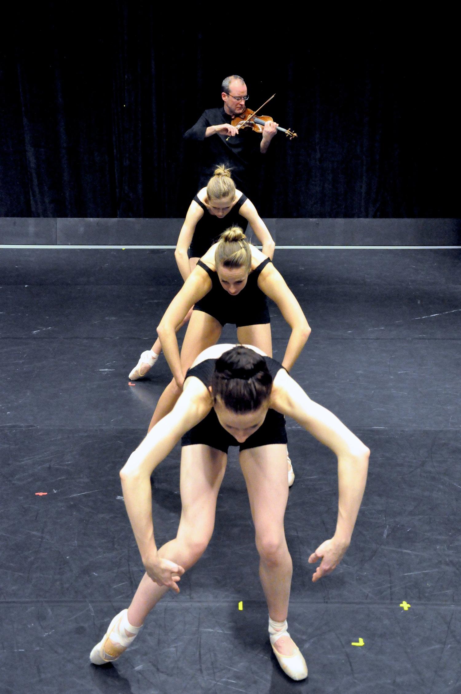 F to B: Caitlin Griffin, Samantha-Jane Gray, Thoenn Glover, Peter Krysa