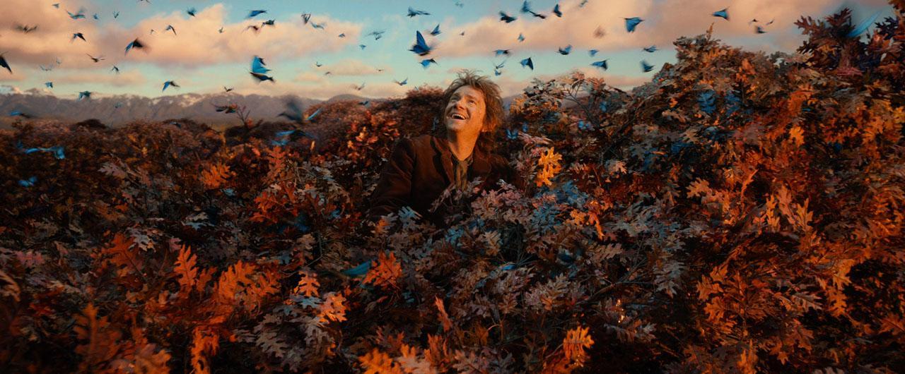 hr_The_Hobbit-_The_Desolation_of_Smaug_13.jpg