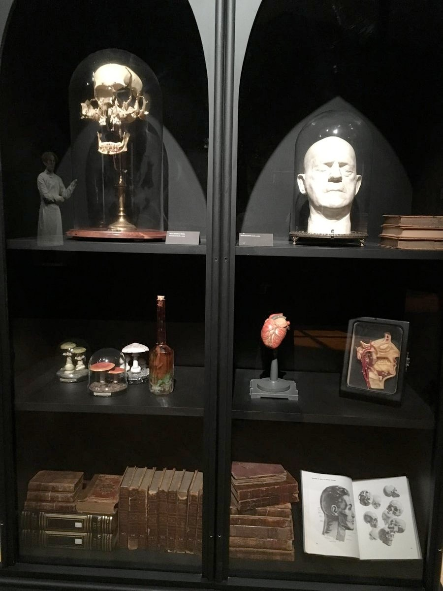 guillermo-del-toro-shares-photos-from-his-monstrously-cool-bleak-house-exhibit23.jpg