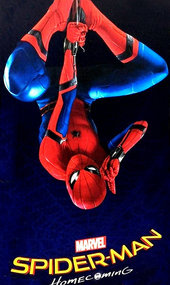 first-official-spider-man-homecoming-poster-released
