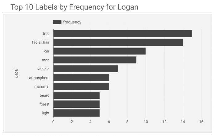 ai_labels.jpg