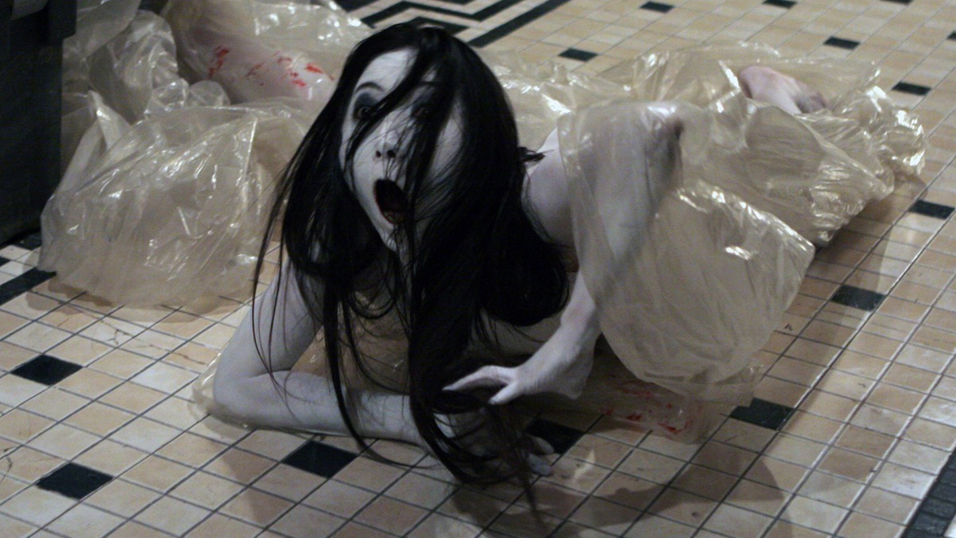 the-grudge-reboot-director-says-the-film-will-be-more-like-david-finchers-seven-social.jpg