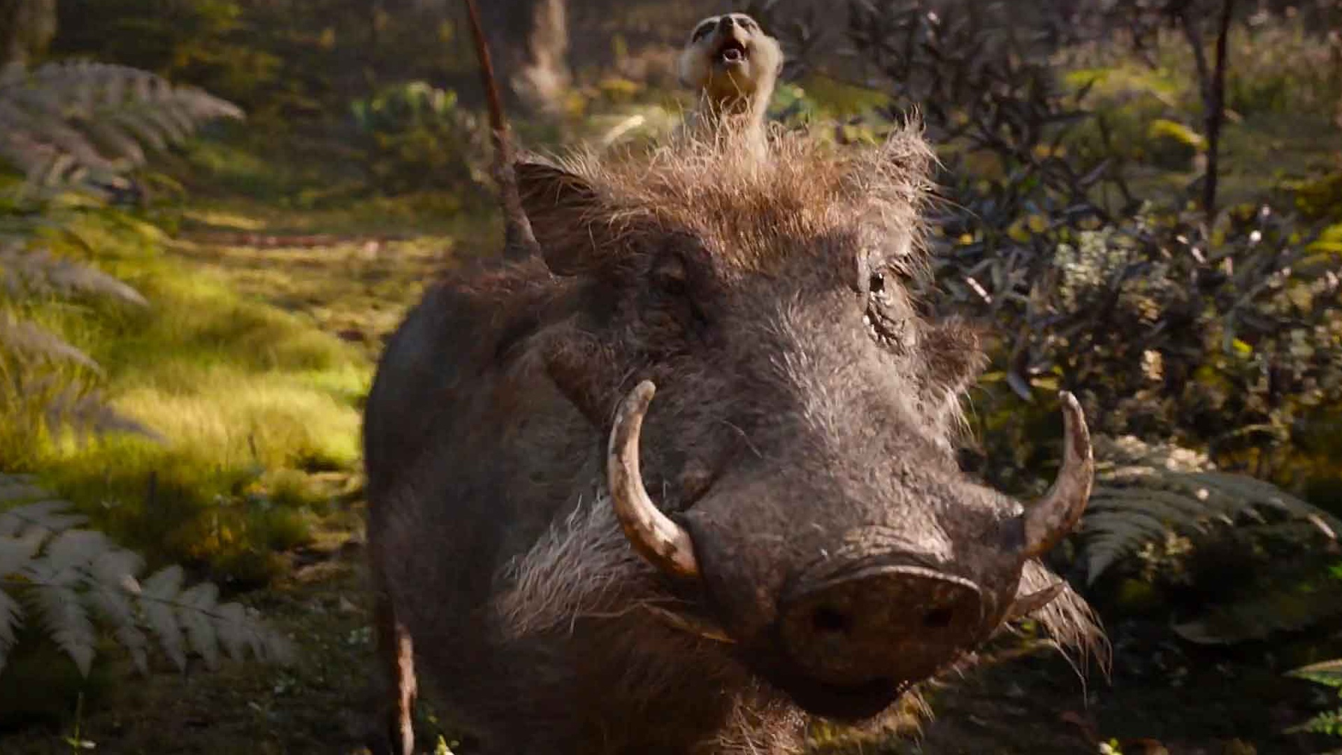 new-the-lion-king-tv-spot-focuses-on-timon-and-pumbaa-social.jpg