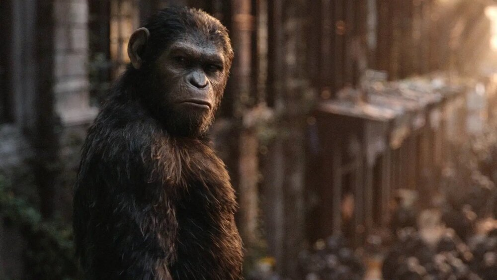 disneys-upcoming-planet-of-the-apes-film-will-reboot-the-franchise-social.jpg